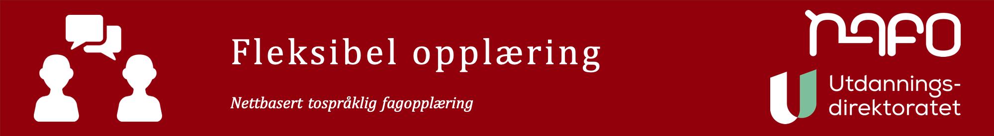 fleksibel oppl�ring banner
