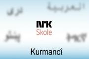 Her finner du ulike matematikkfilmer på kurmanji.