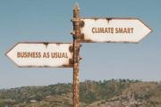 Filmer om klima